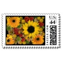 Sunflower Mix Stamp